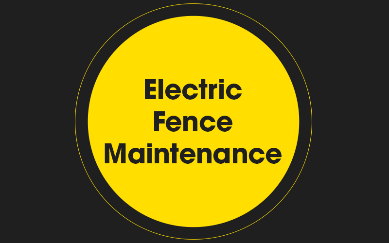 Electric Fence Maintenance
